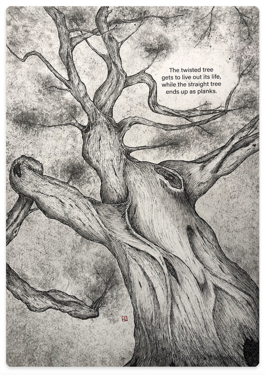 fpn_twisted_tree.jpg